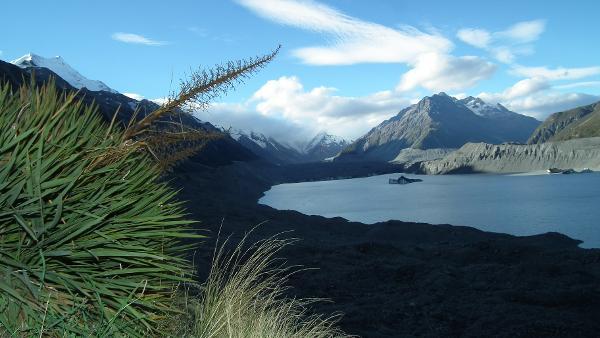 Christchurch, New Zealand -   Critical Peak Demand
